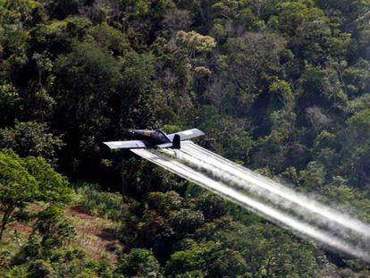 Fumigación con glifosato en Colombia (imagen de archivo)
