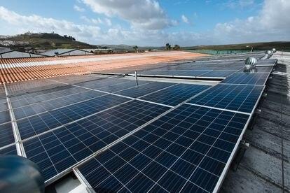 Paneles solares en Andalucía, en una imagen de archivo.