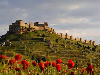 El castillo de Gormaz, fortaleza islámica de Soria.