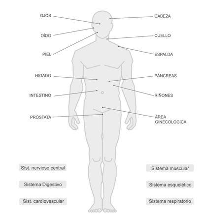 """<a href=""""http://politica.elpais.com/politica/2016/09/27/actualidad/1474971905_092364.html""""><b>LOS ENSAYOS QUE INVESTIGAN EL CANNABIS COMO MEDICINA.</a></b> Más de 600 estudios han analizado la función terapéutica de esta sustancia en los últimos años."""