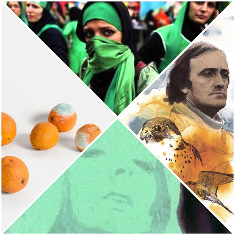 Arriba y bajo, exposición Ok Boomer. A la derecha, ilustración de Christa Soriano de Félix Rodríguez de la Fuente. A la izquierda, instalación del artista Álvaro Urbano