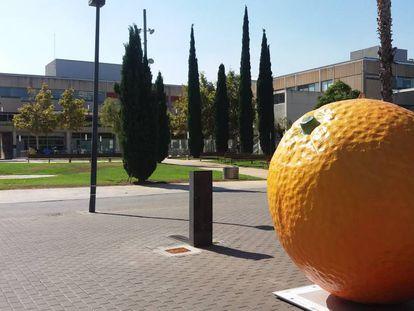 Campaña de #HortaAttac de la Universidad Politècnica de València.