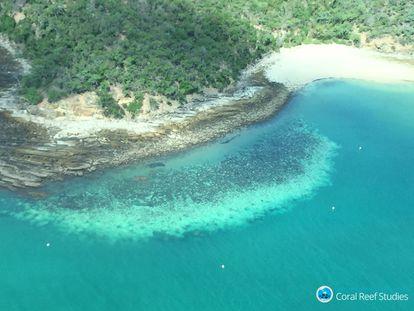 Imagen aérea que muestra corales blanqueados en la Gran Barrera de Australia, en marzo de 2020.
