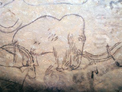 Mamut dibujado en las paredes de la cueva de Rouffignac, en Perigord (Francia).