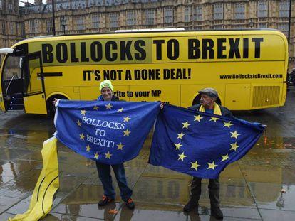 Partidarios de permanecer en la UE se manifiestan este viernes a las puertas del Parlamento de Reino Unido