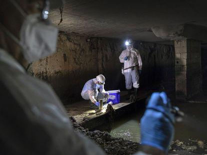 Los técnicos recogen muestras en el subterráneo de València.