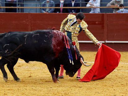 Toreo al natural de Juan Ortega a su primer toro.