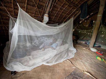 El uso de mosquiteras impregnadas de insecticida ha sido clave en la lucha contra la malaria.