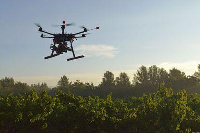 Varias compañías desarrollan 'drones' para usos agricultores.