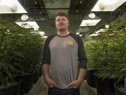 Floyd Landis, exciclista productor legal de marihuana y del 'podcast' 'Straight Dope'.