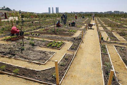 La Huerta de Montecarmelo