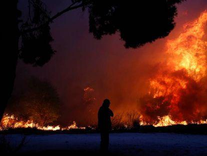 Al menos 79 muertos y 187 heridos por varios incendios en Grecia
