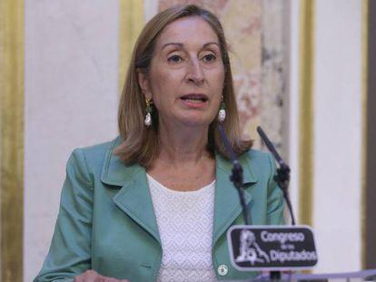 La presidenta del Congreso, Ana Pastor, el 18 de agosto.