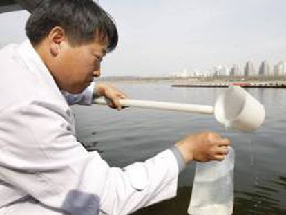 Un investigador toma una muestra de agua en Seúl, Corea del Sur, para realizar un control de radiactividad.