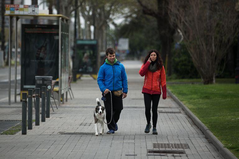 Dos personas pasean un perro por la avenida Diagonal de Barcelona.