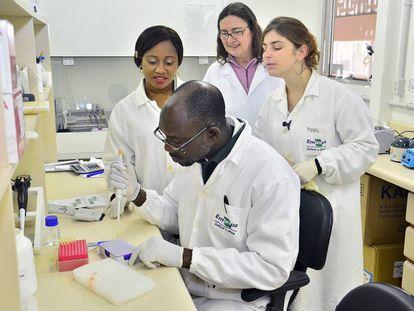 Científicos nigerianos reciben formación en un proyecto de genética molecular de pollos.