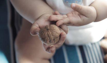 Un bebé sujeta una nuez.