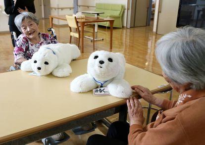 Dos robots Paro, diseñados para el estímulo de pacientes con demencia, alzhéimer y otros trastornos cognitivos en una residencia de mayores de Yokohama (Japón)