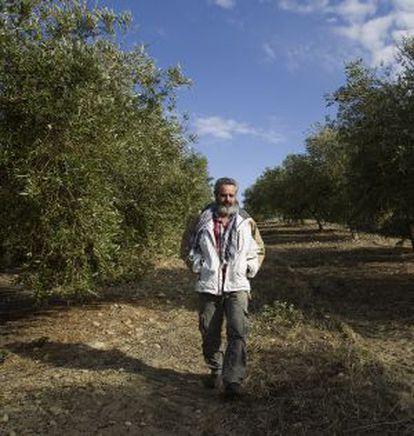 Gordillo pasea por los campos de Marinaleda.