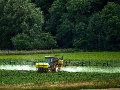 Aplicación de pesticidas en una explotación agrícola de Bailleul, en el norte de Francia.
