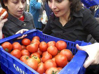 """La organización agraria COAG Almería reparte  20.000 kilos de calabacín, tomate y judía en protesta por las consecuencias """"negativas"""" del acuerdo entre la UE y Marruecos. EFE/Archivo"""
