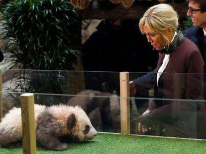 Fiel a la  diplomacia del panda , la primera dama bautiza al primer osezno de esta especie nacido en Francia