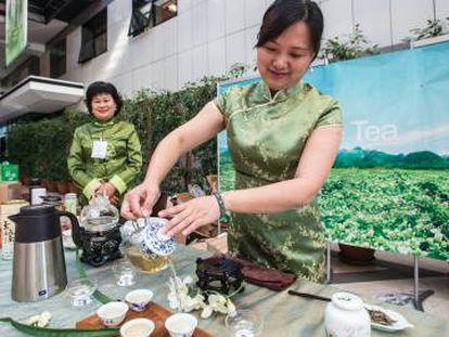 Los tés verde o blanco (en la foto) ganan cuota de mercado en todo el planeta.