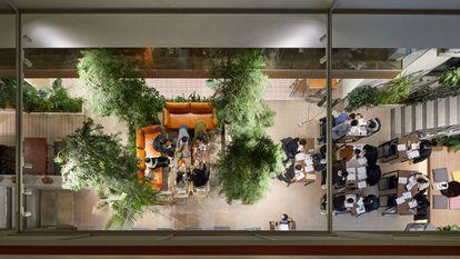 El bloque de microapartamentos de lujo Treehouse diseñado por el estudio Bo-Daa se encuentra en los barrios más exclusivos de Seúl. |