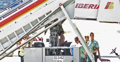 El cuerpo del cubano Adonis G. B., de 23 años, que ha aparecido sin vida en el tren de aterrizaje de un avión de Iberia procedente de la Habana que tomó tierra en Madrid-Barajas a las 13.50.