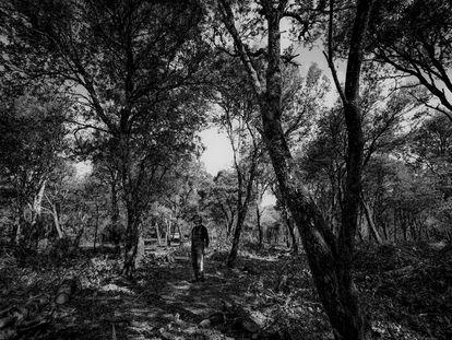 Miguel Lander, el último carbonero. Viloria, Navarra.