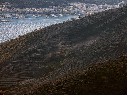 Superficie afectada por el último incendio en el  Cap de Creus (Girona).