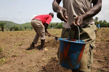 Campesinos de Gnoungouya Village, en Guinea.
