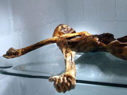 Nuevas revelaciones científicas sobre los instrumentos que llevaba el Hombre de Hielo aclaran aspectos sobre su final