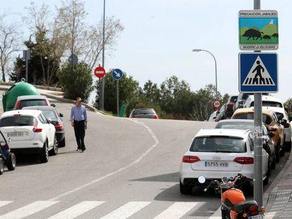 Una señal avisa del peligro de jabalíes al noroeste de Madrid. En vídeo, varias manadas se pasean por Torrelodones.