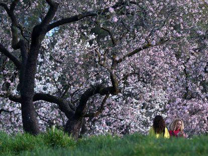 Dos mujeres junto a los almendros en flor en el parque Quinta de los Molinos de Madrid.