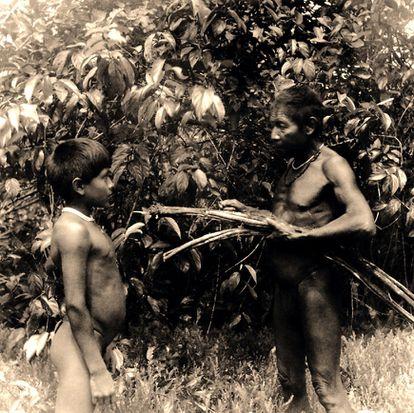 Un médico tradicional macuna recoge junto a un niño tallos de yagé ('Banisteriopsis caapi') en el río Popeyacá (Colombia, 1952)