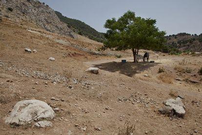 Posible ubicación de la fosa de García Lorca, marcada con piedras, entre Víznar y Alfacar.