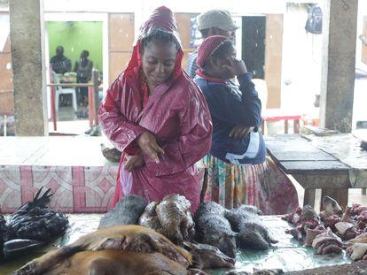 Los pangolines, en el centro, se venden en mercados de África, como este de Libreville (Gabón), y varios países de Asia.