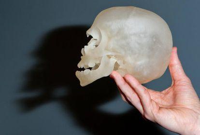 Un modelo de calavera humana impresa en 3-D.