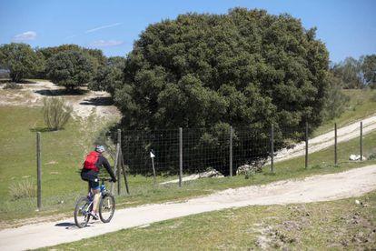 Un ciclista pasando al lado del vallado de la finca Romanillos.