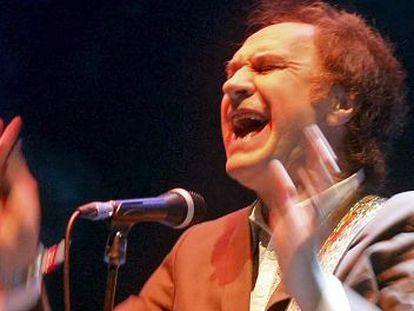 El artista británico Ray Davies, en un concierto en el Festival Internacional de Benicássim en 2010.