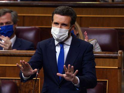 El presidente del Partido Popular, Pablo Casado, durante la sesión de control al Gobierno en el Congreso, el pasado miércoles.