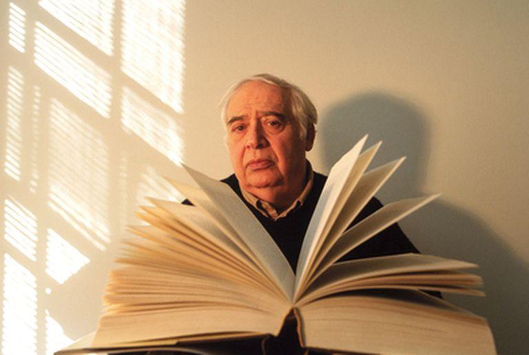 Harold Bloom (Nueva York, 1930), fotografiado en 2002 en su casa de Manhattan.