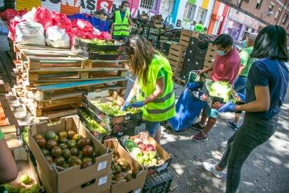Reparto de alimentos de la Red de Apoyo Mutuo de Aluche, el pasado 8 de agosto en Madrid.