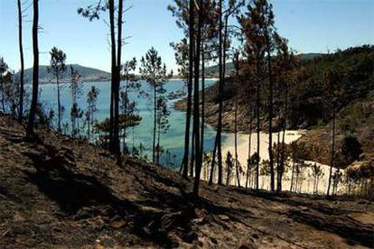 Desolador paisaje el que puede verse en esta playa de Corcubión (A Coruña).