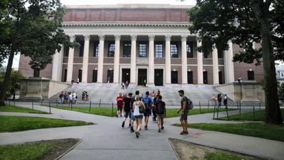 Imagen de estudiantes en agosto de 2019 fuera de la biblioteca de la Universidad de Harvard, Cambridge.