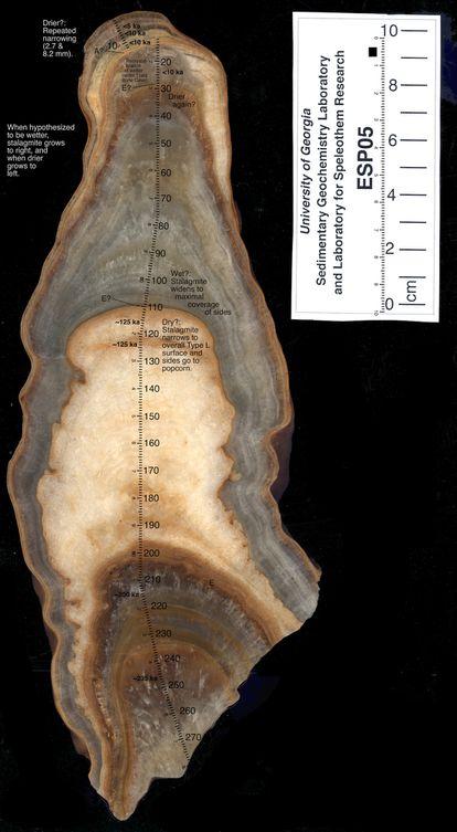 Estudio de ESP05, otra de las estalagmitas de Cova Arcoia analizadas por el Instituto Universitario de Xeoloxía.