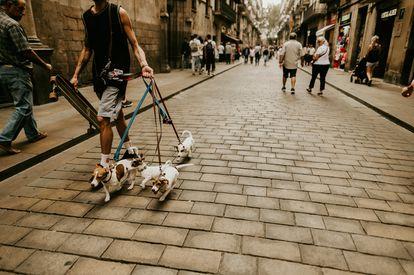 Calle peatonal de Barcelona.