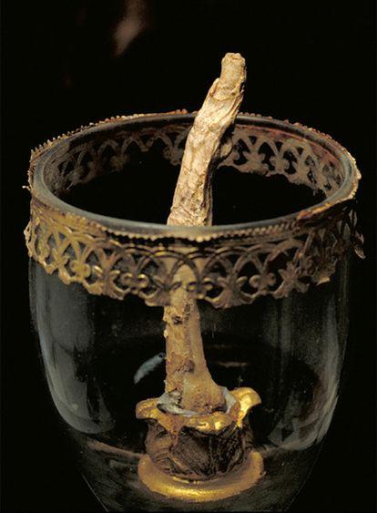 Uno de los dedos de la mano derecha de Galileo separados del cuerpo durante la exhumación del cadáver