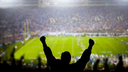 Fans celebrate at a football game